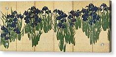 Irises Acrylic Print by Ogata Korin