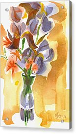 Irises With Stars Of Bethlehem Acrylic Print by Kip DeVore