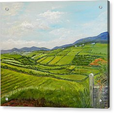 Acrylic Print featuring the painting Irish Fields - Landscape by Sandra Nardone