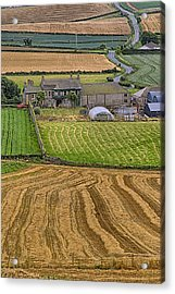 Acrylic Print featuring the photograph Irish Mosaic by Gary Hall