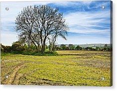 Irish Springtime Acrylic Print by Jane McIlroy