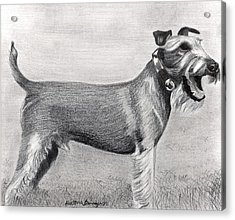 Irish Terrier Dog Portrait Acrylic Print by Olde Time  Mercantile