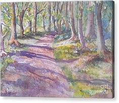 Irish Woods Acrylic Print by Patricia Pushaw