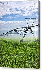 Irrigation Equipment On Farm Field Acrylic Print by Elena Elisseeva