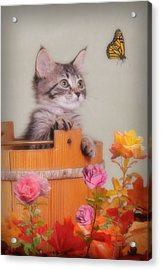 Is That Flower Flying? Acrylic Print