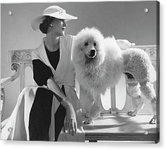 Isabel Johnson With A Poodle Acrylic Print by Edward Steichen