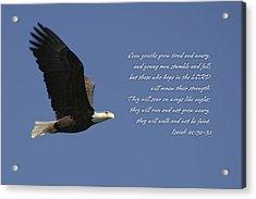Isaiah 40 Acrylic Print
