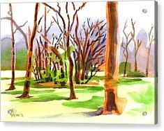 Island In The Wood Acrylic Print by Kip DeVore