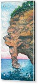 Island Left Acrylic Print