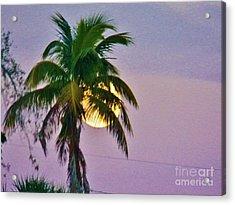 Island Moonrise 1 Acrylic Print by Judy Via-Wolff