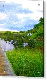 Island State Park Boardwalk Acrylic Print by Pamela Hyde Wilson