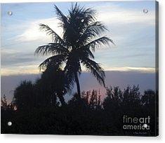 Island Sunset Acrylic Print by Megan Dirsa-DuBois