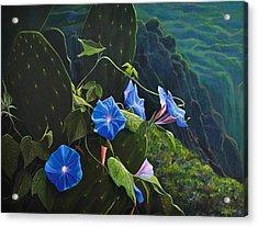 Isle Of Capri Acrylic Print