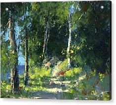 Isle Royale A Trail Near The Lake Acrylic Print by Tom Nelson