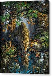 Isle Royale Fall Acrylic Print by Mark Fredrickson