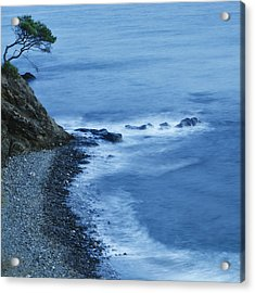 Isolated Tree On A Cliff Overlooking A Acrylic Print by Ken Welsh