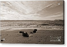 Acrylic Print featuring the photograph Isolation by Arlene Sundby