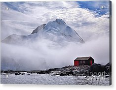 Isolation Acrylic Print