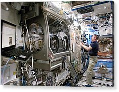 Iss Astronaut In A Laboratory Acrylic Print
