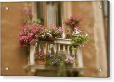 Italian Windowbox 1 Acrylic Print by Teresa Tilley