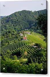 Italian Wine Prosecco Acrylic Print by Salvatore Gabrielli