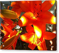 It's A Beautiful Day Lily Acrylic Print by Stephanie Aarons