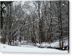 Its A Beautiful Winter Acrylic Print by Kay Novy