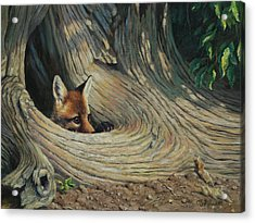 Fox - It's A Big World Out There Acrylic Print by Crista Forest