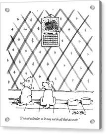 It's A Cat Calendar Acrylic Print