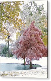 Its Beginning To Look A Lot Like Christmas Acrylic Print by Robert ONeil