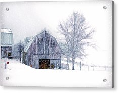 It's Cold Outside Acrylic Print by Mary Timman