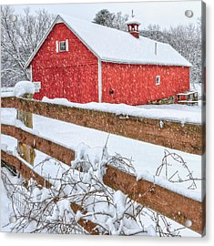 It's Snowing Square Acrylic Print by Bill Wakeley