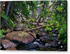 Acrylic Print featuring the photograph Ivanhoe Serenity by Jeremy Rhoades