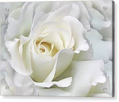 Ivory Rose Flower In The Clouds Acrylic Print by Jennie Marie Schell