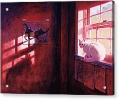 Ivory's Shadow Acrylic Print by Blue Sky