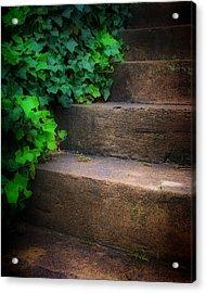 Ivy Beside Steps Acrylic Print