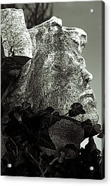 Ivy In Mourning Acrylic Print