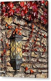 Ivy Lantern Acrylic Print