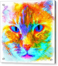Izzy Acrylic Print by Moon Stumpp