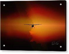 Jabiru Sunset Acrylic Print