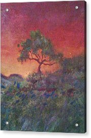 Jacaranda Tree Acrylic Print by Joy Gilley