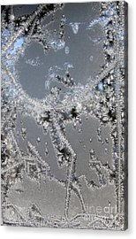 Jack Frost's Victory Dance Acrylic Print
