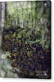 Jack Kell's Woods Acrylic Print by RC DeWinter