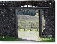 Jack London Ranch Winery Ruins 5d22132 Acrylic Print by Wingsdomain Art and Photography