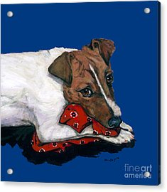 Jack Russell With A Red Bandana Acrylic Print
