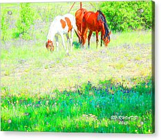 Acrylic Print featuring the digital art Jack Smokey And Camelot Texas Spring A by Robert Rhoads
