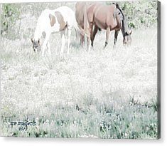 Acrylic Print featuring the digital art Jack Smokey And Camelot Texas Spring C by Robert Rhoads