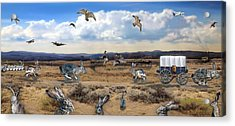 Jackrabbit Juxtaposition  At Owyhee View Acrylic Print