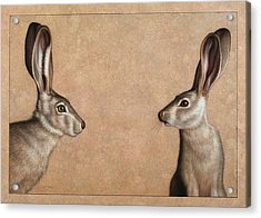 Jackrabbits Acrylic Print by James W Johnson