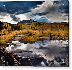 Jack's Pond Acrylic Print by Steven Reed